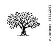 olive tree silhouette icon... | Shutterstock .eps vector #558212053