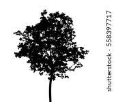 black silhouette of tree...   Shutterstock .eps vector #558397717