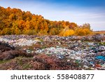Illegal Dump Near Yellow Autum...