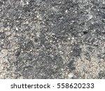 rough cement texture background   Shutterstock . vector #558620233