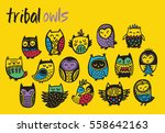 tribal owl birds set. hand... | Shutterstock .eps vector #558642163