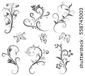vector of calligraphic design... | Shutterstock .eps vector #558745003