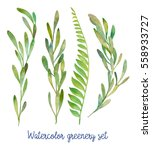 watercolor greenery set. hand... | Shutterstock . vector #558933727