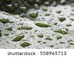 Small photo of Closeup image of water drop on jackfruit leaf. Canted angle.
