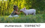 the little toddler girl... | Shutterstock . vector #558988747