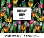 vector flowers art. colorful... | Shutterstock .eps vector #559002913