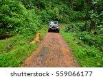 jeep in jungle   Shutterstock . vector #559066177