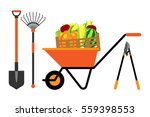 fruits and vegetables in... | Shutterstock .eps vector #559398553