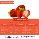 strawberry health benefits.... | Shutterstock .eps vector #559428757