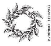 frame from the green tea leaves ... | Shutterstock .eps vector #559464583