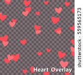 heart overlay  falling heart... | Shutterstock .eps vector #559565173