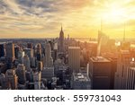 new york city skyline with... | Shutterstock . vector #559731043