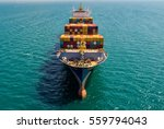 container container ship in... | Shutterstock . vector #559794043