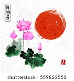 pink lotus flowers and red sun... | Shutterstock .eps vector #559833553
