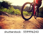 younng woman riding mountain... | Shutterstock . vector #559996243