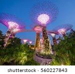 Singapore  Night View Of...