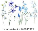 Watercolor Floral Set Spring...