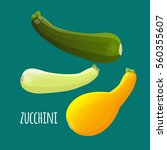 zucchini or courgette... | Shutterstock .eps vector #560355607