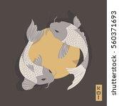 two carp koi fish swimming...   Shutterstock .eps vector #560371693