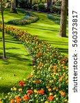 landscaped formal garden. park. ... | Shutterstock . vector #560373817