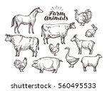 farm  vector sketch. collection ... | Shutterstock .eps vector #560495533