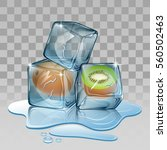 ice cube with kiwi. vector...   Shutterstock .eps vector #560502463