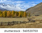 Scenic Autumn Landscape With...