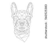 french bulldog  animal head in... | Shutterstock .eps vector #560525383