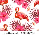 beautiful seamless vector... | Shutterstock .eps vector #560589937