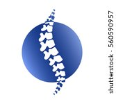 vector  human spine isolated... | Shutterstock .eps vector #560590957