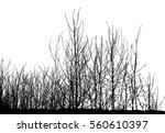 realistic silhouette of bush... | Shutterstock .eps vector #560610397