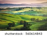gorgeous greens in the... | Shutterstock . vector #560614843