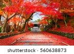 Autumn In Japan Kyoto  Entranc...