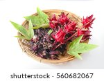 Roselle Tea  Fresh And Dried...