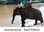 elephant riding across the... | Shutterstock . vector #560733823