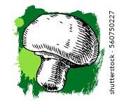 hand drawn mushroom. can be... | Shutterstock .eps vector #560750227
