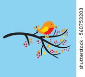 bird on a branch with berries... | Shutterstock .eps vector #560753203