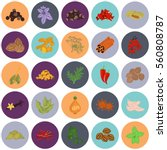 set of color flat spice icons | Shutterstock .eps vector #560808787