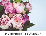 peonies on blue background. | Shutterstock . vector #560920177
