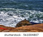 natural rock stone cliff... | Shutterstock . vector #561004807