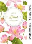 vector botanical vertical... | Shutterstock .eps vector #561027043