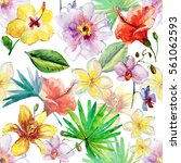 tropical seamless pattern with... | Shutterstock . vector #561062593