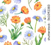 seamless pattern of watercolor... | Shutterstock . vector #561092383