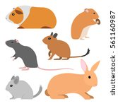 set of cute rodents  vector... | Shutterstock .eps vector #561160987