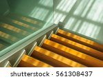 the morning sun shines on the... | Shutterstock . vector #561308437