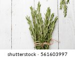 background rosemary on a wooden ... | Shutterstock . vector #561603997