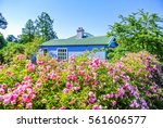 charming rural cottage in... | Shutterstock . vector #561606577