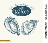 hand drawn clams isolated on...