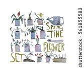 hand paint watercolor spring... | Shutterstock . vector #561855583