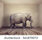 elephant in the room metaphor... | Shutterstock . vector #561870073
